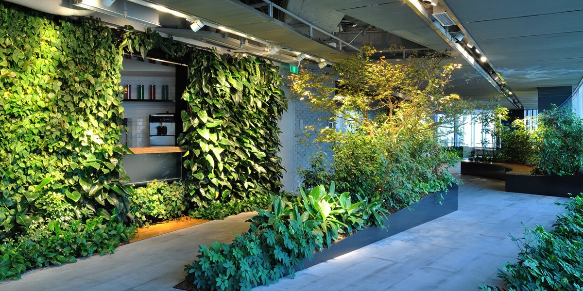 Studio Illumine - Greenwall Lighting Installation